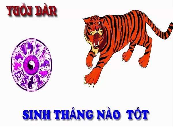 tuoi-dan-sinh-thang-nao-tot