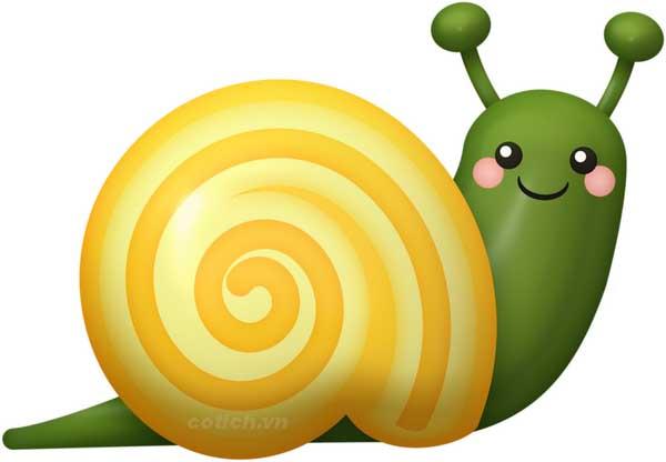 Giải mã ý nghĩa nằm mơ thấy con ốc là điềm báo gì