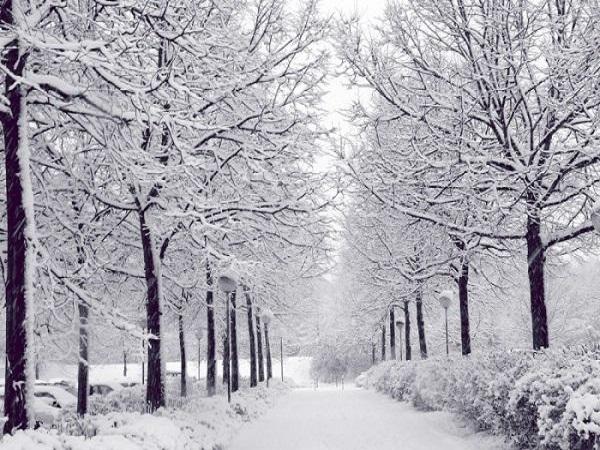 Mơ thấy tuyết có điềm báo gì?