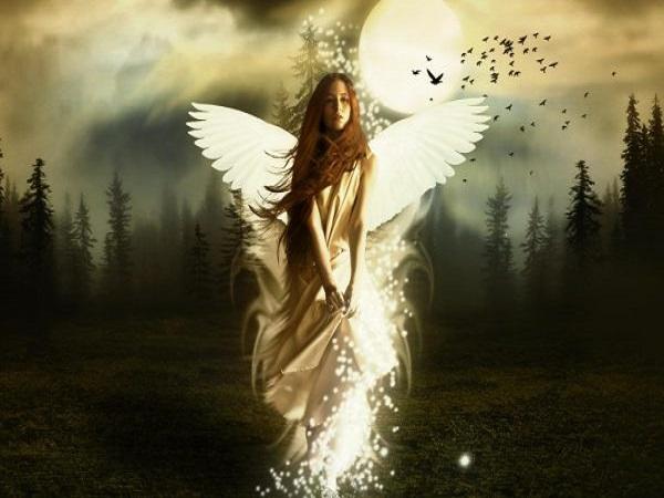 Nằm mơ thấy tiên có ý nghĩa gì trong cuộc sống