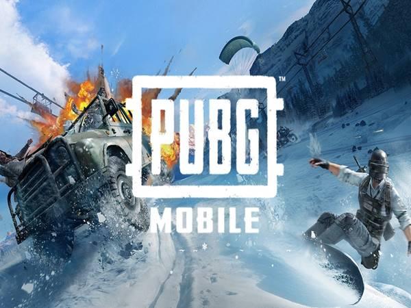 Top 5 game sinh tồn mobile hay nhất thời điểm hiện nay